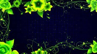 getlinkyoutube.com-Night Blooms