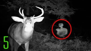 getlinkyoutube.com-5 Creepiest Unexplained Trail Cam Photos