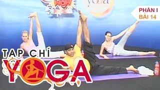 Hướng dẫn tập Yoga cho người mới bắt đầu - Tạp chí yoga - P1 Bài 14