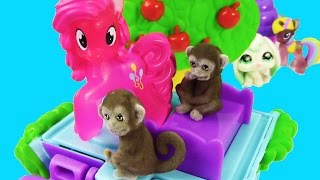 getlinkyoutube.com-MLP Pinkie Pie Mom Baby Jungle In My Pocket Monkey Treehouse Toy Review Playset