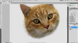 getlinkyoutube.com-photoshop教學「基礎去背合成」