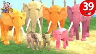 เพลงช้าง เป็ด ลิง ปู ก ไก่ รวมเพลงเด็ก 39 นาที By KidsMeSong