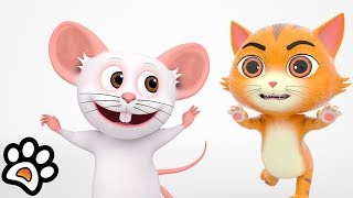 No Entry : Paw Pack | Funny Kids Shows | Best Cartoon Short Films   Little Treehouse