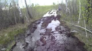 самодельный гусеничный вездеход на болоте