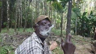 getlinkyoutube.com-Betel Nut Processing | A Documentary