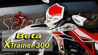 getlinkyoutube.com-BETA X Trainer 300 la prova di Soloenduro