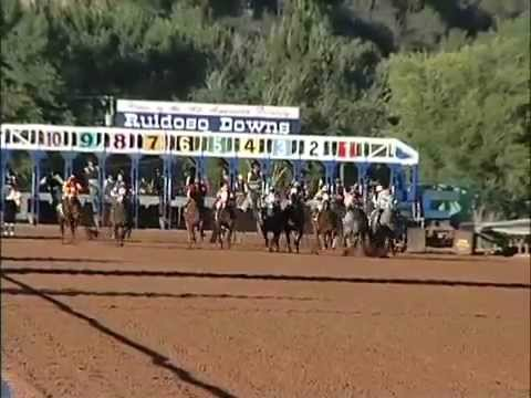 American Quarter Horse Racing Music Montage