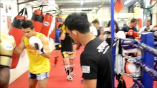 Seminar with Saenchai at Hanuman Thai Boxing Edinburgh
