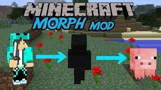 getlinkyoutube.com-【MinecraftMOD紹介】倒したmobに変身できる/Morph MOD