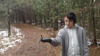 Jack meets Chickadee