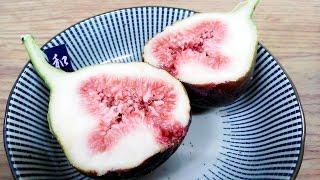 getlinkyoutube.com-더빙걸 꽃이 피지 않는 과실 무화과 (fig)