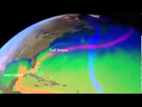 Pacific Ocean Is Being Killed by Fukushima Radiation  - We're Fuked...