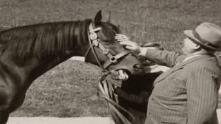 Sex And The Swastika (World War 2 Documentary)