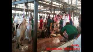 getlinkyoutube.com-Aqiqah & Qurban @ warongKoboi, Makkah aL Mukarramah