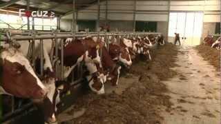 De Boer Op - aflevering 1 - 12 maart 2013