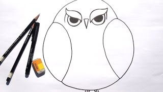 getlinkyoutube.com-Beginner Learn to Draw Grumpy Owl for Acrylic Painting