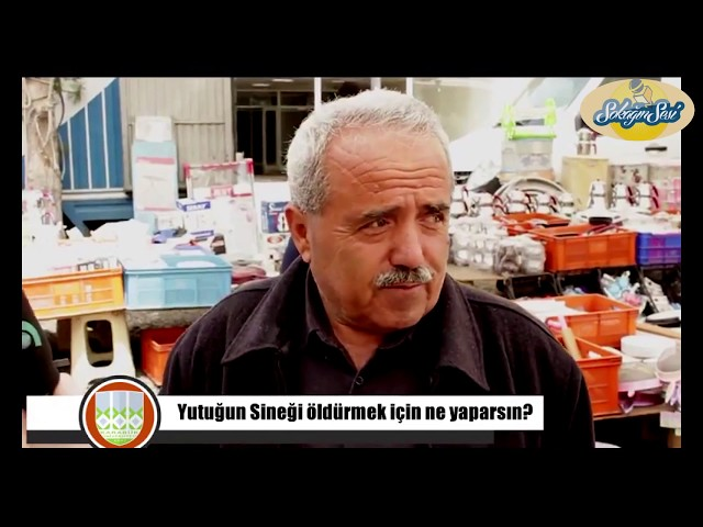 SOKAĞIN SESİ