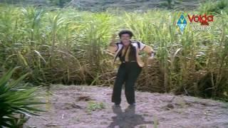 getlinkyoutube.com-Seetarama Kalyanam Songs - Raallallo isukallo -  Balakrishna, Rajani