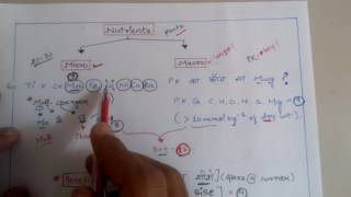 Trick to learn micronutrients and macronutrients for NEET ,AIIMS ,JIPMER, KVPY etc. Biology exams .