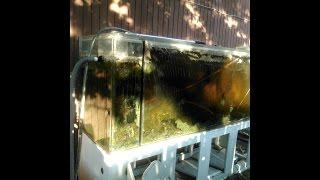 getlinkyoutube.com-DIY Buffing Acrylic Tanks