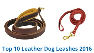 10 Best Leather Dog Leashes 2016