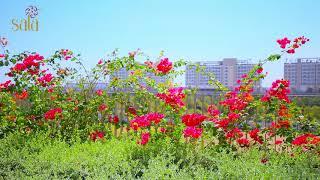 Sadora Apartment - Khu đô thị Sala
