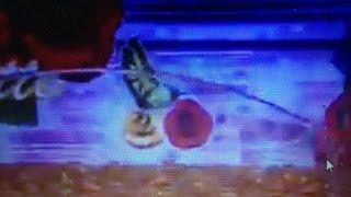 getlinkyoutube.com-【パチンコCRベルサイユのばら薔薇の運命】 金保留+アゲハチョウ、激愛、ベルサイユゾーン、花柄カットイン、大当り!?