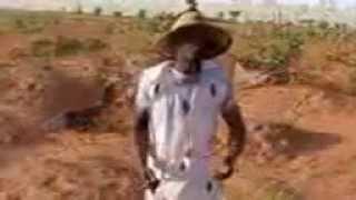 getlinkyoutube.com-Seyni Maiga Dossa - Niger musique