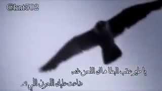 getlinkyoutube.com-يا طير عقب البطا هاك اللحن غنه شيله قووويه) كلمات سداح