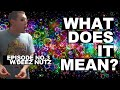 Deez Nuts - What Does It Mean? Ep.03