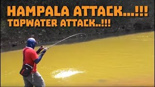getlinkyoutube.com-Casting hampala Serayu Topwater Attack