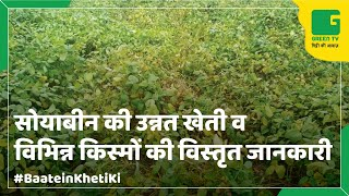 getlinkyoutube.com-Soyabean Farming:(सोयाबीन की खेती) In Baatein Kheti Ki - On Green TV