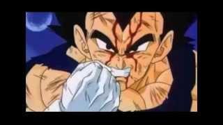 getlinkyoutube.com-I Am A Warrior The Sayain Prince VEGETA! - DBZ Dragon Ball Z