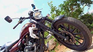 getlinkyoutube.com-#Bikes@Dinos: 2016 Bajaj Avenger Street 150 Cosmic Red colour Review, Walkaround