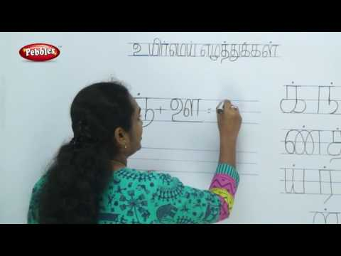 How to write Tamil Alphabets - ஊ வரிசை & Words Formation -