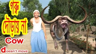 getlinkyoutube.com-funny cow videos Dr.Lony .Problem Goru douray na.Cow does not move.Bangla funny video by Dr.Lony ✔