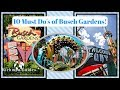 10 MUST DO'S AT BUSCH GARDENS TAMPA BAY! - Vlog 38