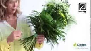 getlinkyoutube.com-Green Inspiration by Dorien van den Berg how to make tutorial