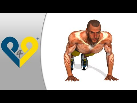 Push ups - Hands as chest width