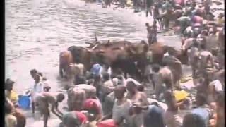 getlinkyoutube.com-RWANDA 1994:NIGHTLINE