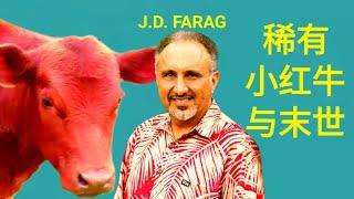 (J.D. FARAG) 稀有小红牛与末世