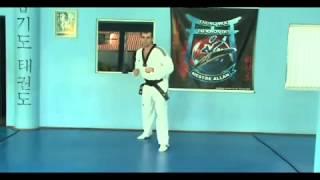 Chutes Basicos Taekwondo