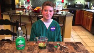 getlinkyoutube.com-Matthew's DNA Extraction Project with Spinach and Strawberries