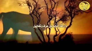 شيلة لابوكم ولابو ضعوف الرياجيل كلمات مسعد ضيف الله بن مشفي اداء هزاع المهلكي