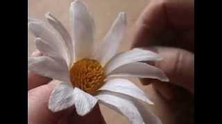getlinkyoutube.com-Fiori di carta crespa - Crepe paper flowers: Margherita // Daisy