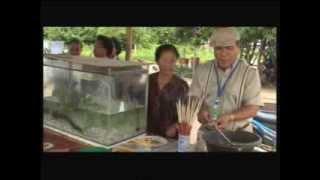 getlinkyoutube.com-พร้อมพันธ์TVพบปลาประหลาดในน้ำโขงบ้านหนองหอยท่า อ ธาตุพนม