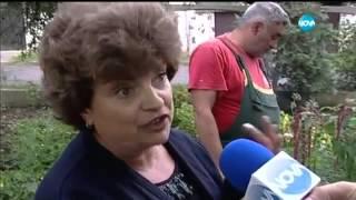 Сестра срещу брат - Съдебен спор - Жоро Игнатов (20.09.2015)
