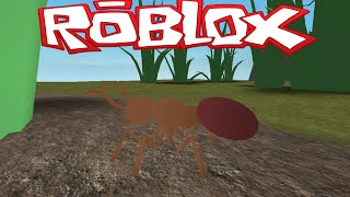 getlinkyoutube.com-Roblox Ant Simulator