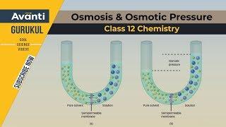 getlinkyoutube.com-Class 12 Chemistry - Osmosis & Osmotic Pressure