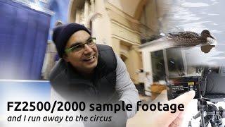 getlinkyoutube.com-FZ2500 2000 SAMPLE FOOTAGE AND TOUR OF MY JOB: run away to the circus
